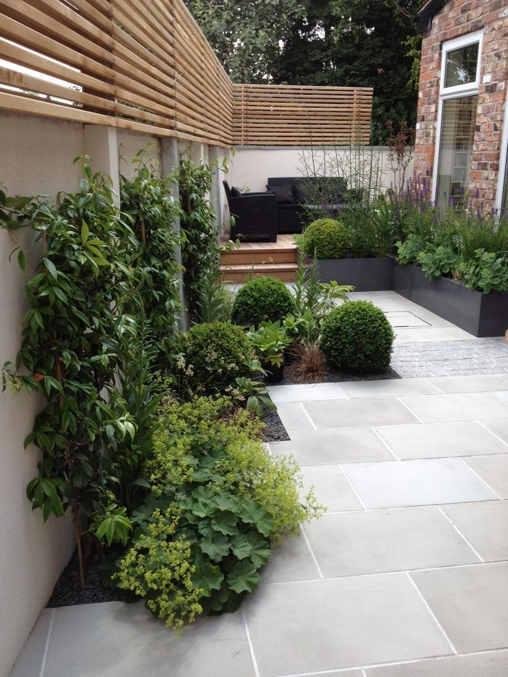 slim courtyard house with modern paving and stylish planting  | adamchristopherd...