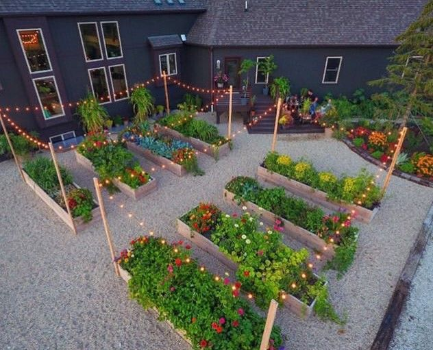 Stunning Vegetable Garden Ideas | Family Food Garden