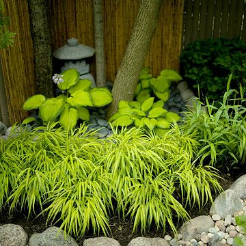 Japanese gardens rely on subtle color contrast and bold textural differences to ...
