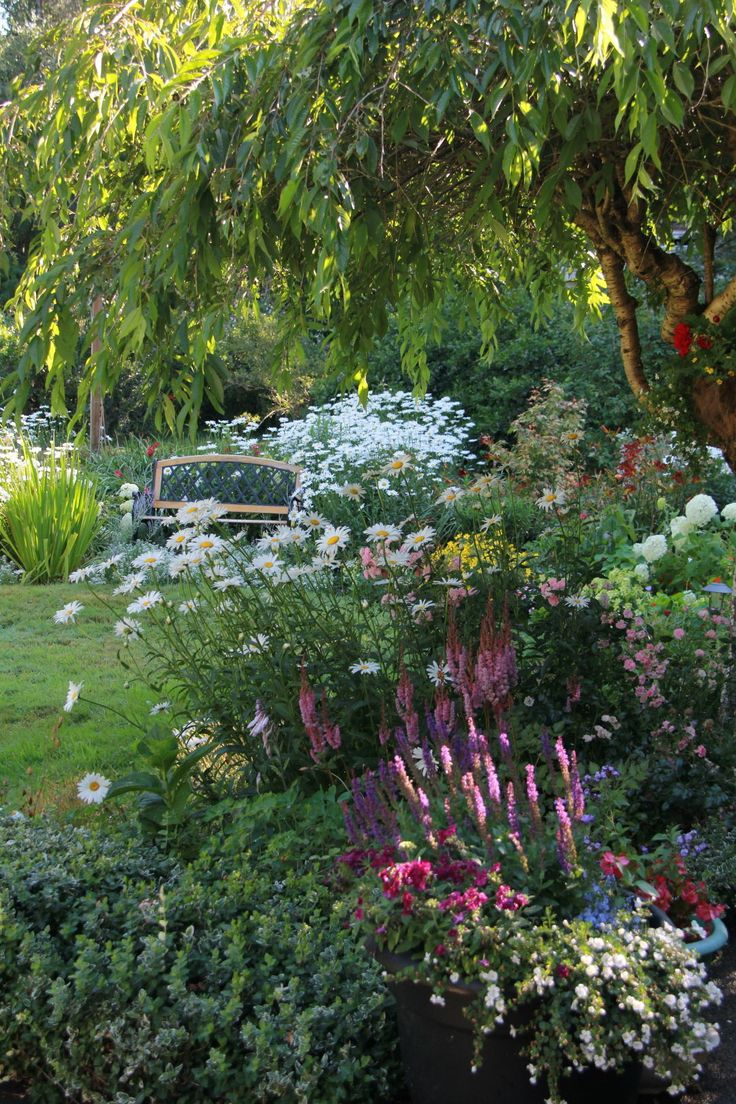 A garden evolves year after year - FineGardening