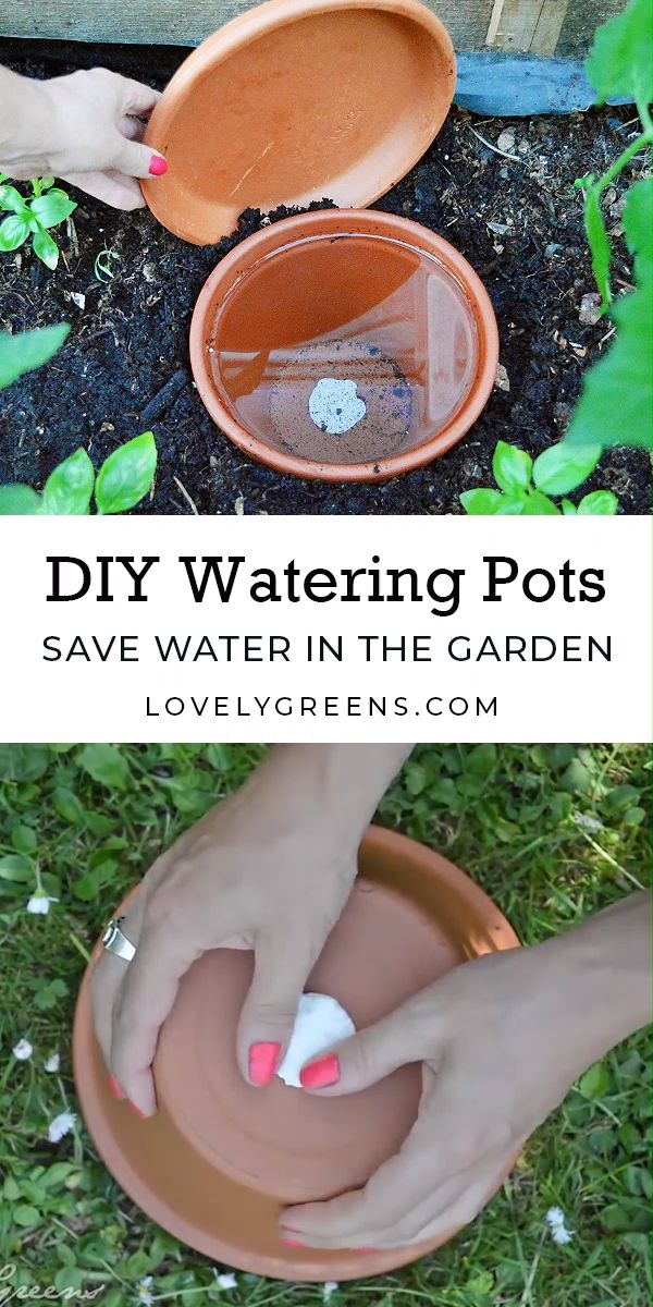 Save water in the garden with DIY Watering Pots