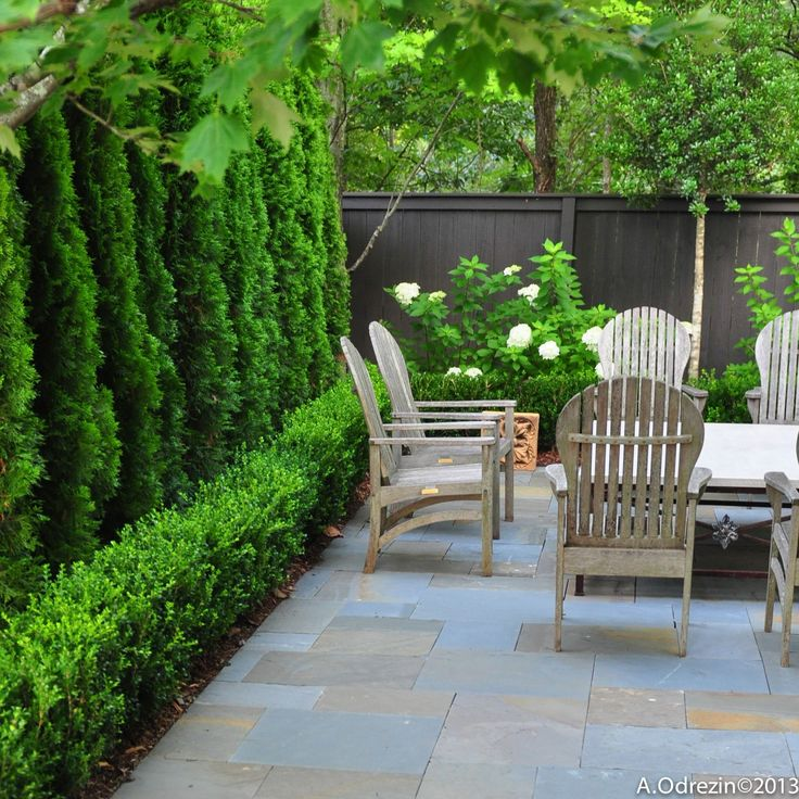 45 Courtyard Garden Ideas Privacy Screens Landscape Design