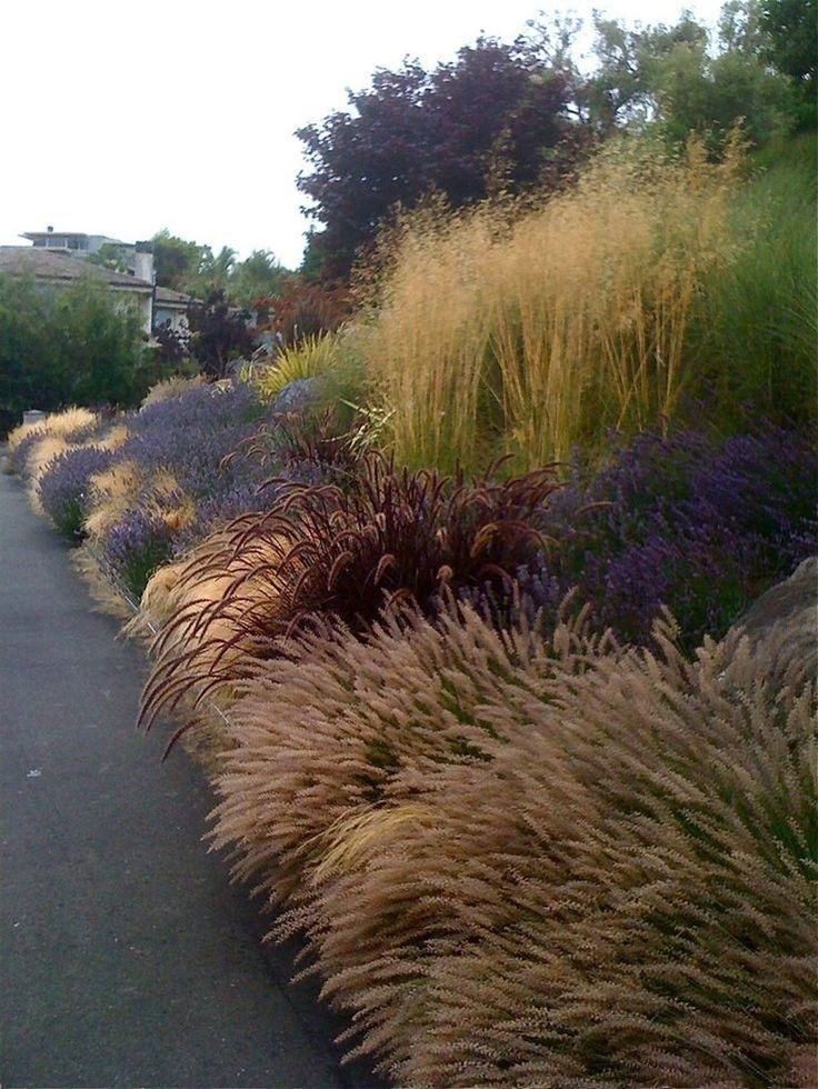 44 Beautiful Grass Garden Design Ideas For Landscaping Your Garden - Trendehouse...