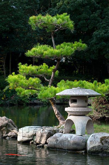 First-rate very small japanese garden ideas only in kennyslandscaping...