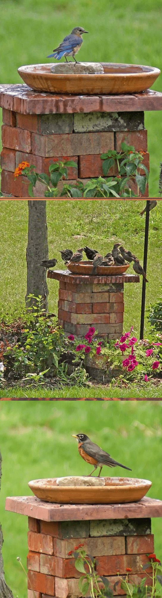 Bird bath stand from bricks | Creative Ways To Use Old Bricks In Your Garden #re...