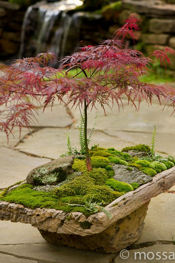 29 Creative Japanese Garden Designs You Can Build To Complement Your Backyard | ...