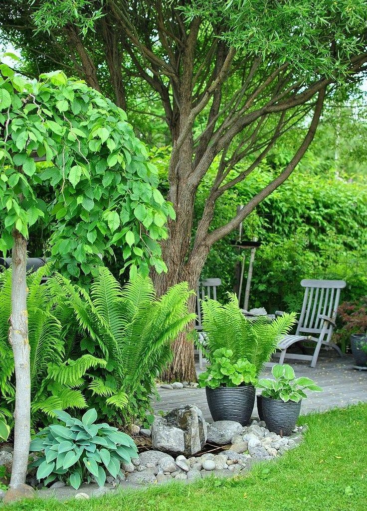 50+ Simple Shade Garden Design Ideas ,  #design #garden #ideas #shade #simple