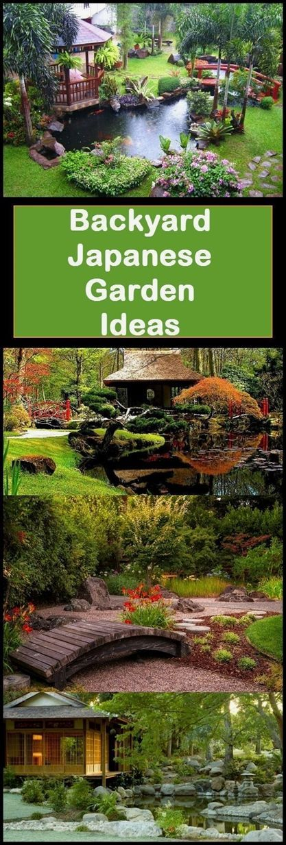 Ready to create your own backyard Japanese garden? These tips will help! I've ...