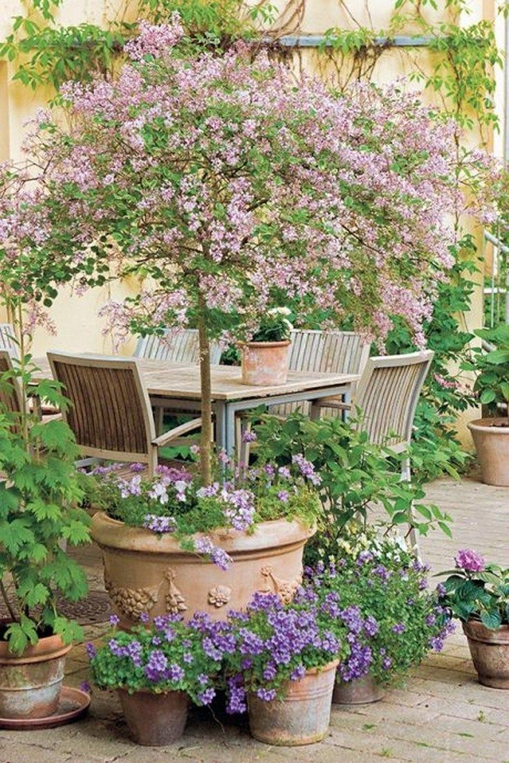 ✔56 beautiful cottage garden design ideas with the old garden style 45 ~ aacmm...