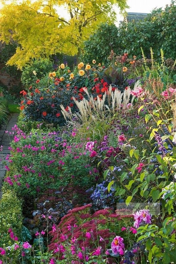 If you want to make a perennial cottage garden, these are the plants you should ...