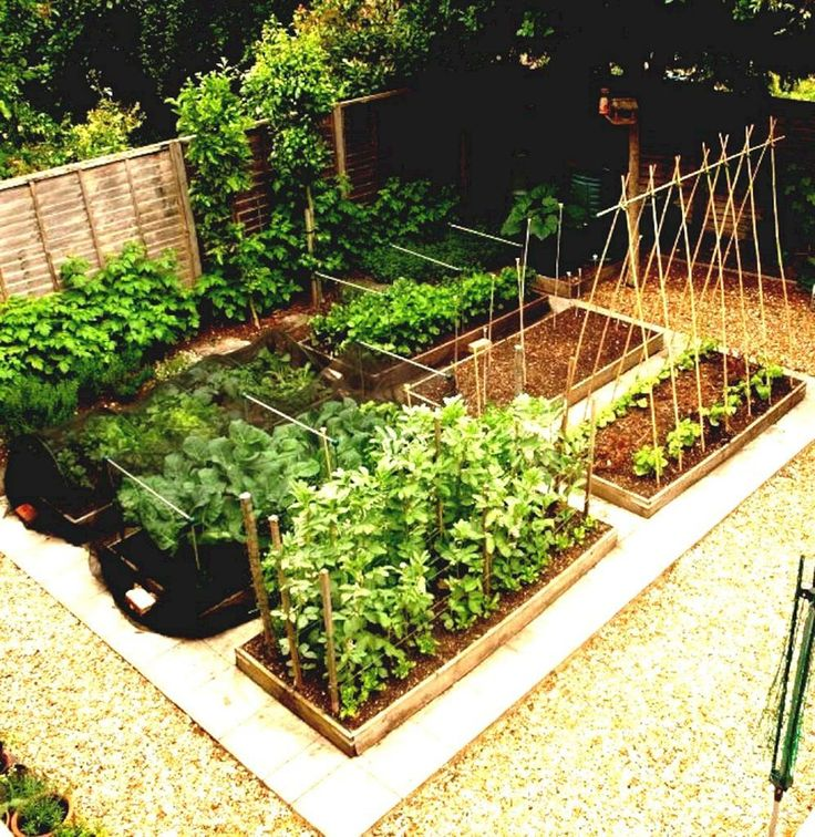 Nice 10 Vegetable Garden Ideas For Amazing Home Front Yard decoredo.com/...