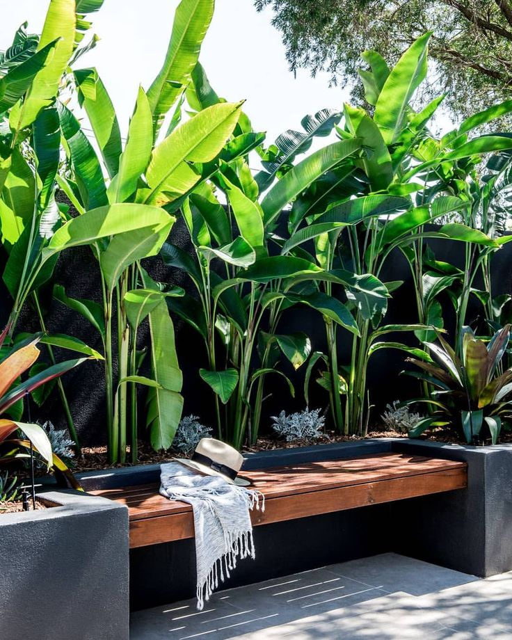 Another look at our Bardon garden which recently won @landscapeqld Construction ...