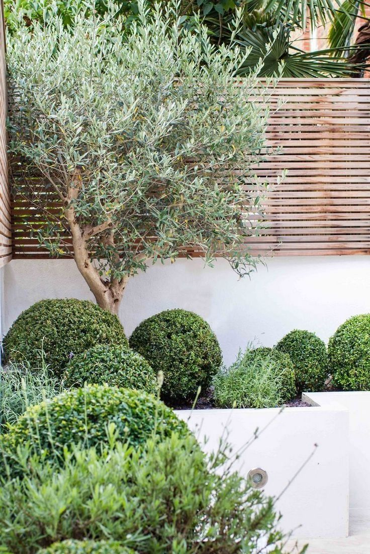 63 Contemporary Garden design alteration and refurbishment with modern planting ...