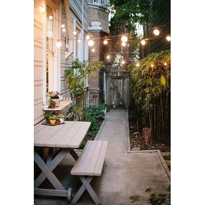 HometownEvolutionInc 100-Light Globe String Lights Finish: