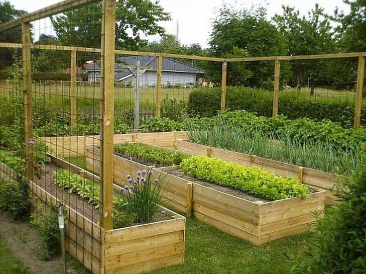 Most Popular Kitchen Garden Design Ideas 16