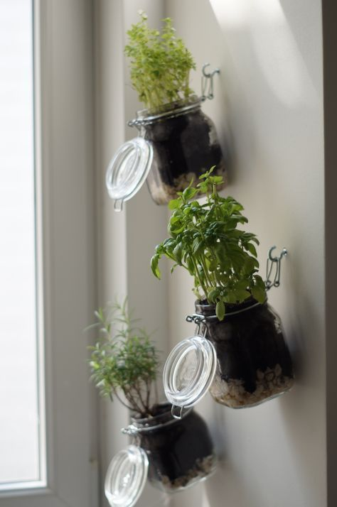 DIY herb garden, step by step guide, indoor herb garden by yourself ...