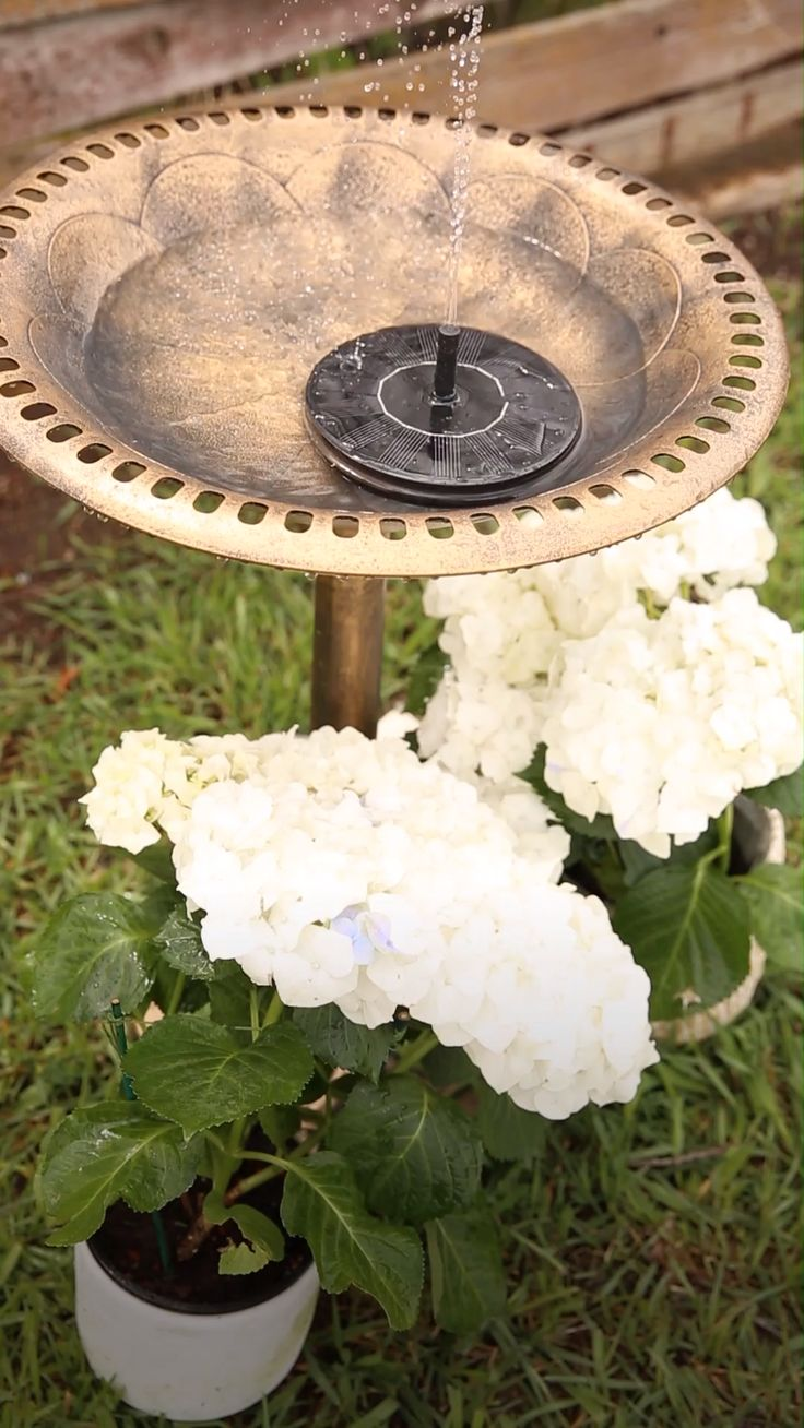 This incredible little gadget can turn any bird bath into a gorgeous fountain (w...