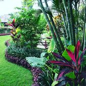 Tropical Garden Landscape Design (Tropical Garden Landscape Design) design ideas...