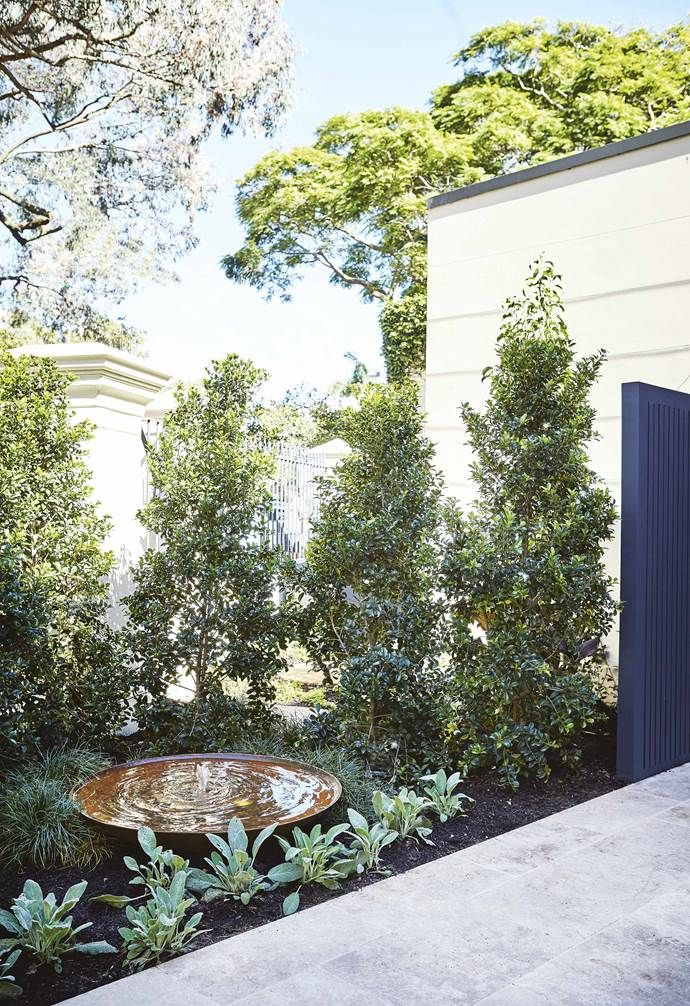Fifth Season Landscapes' smart use of space results in cohesive front and ba...
