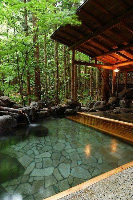 Landscape design a pool area is a different difficulty for everyone, equally as ...