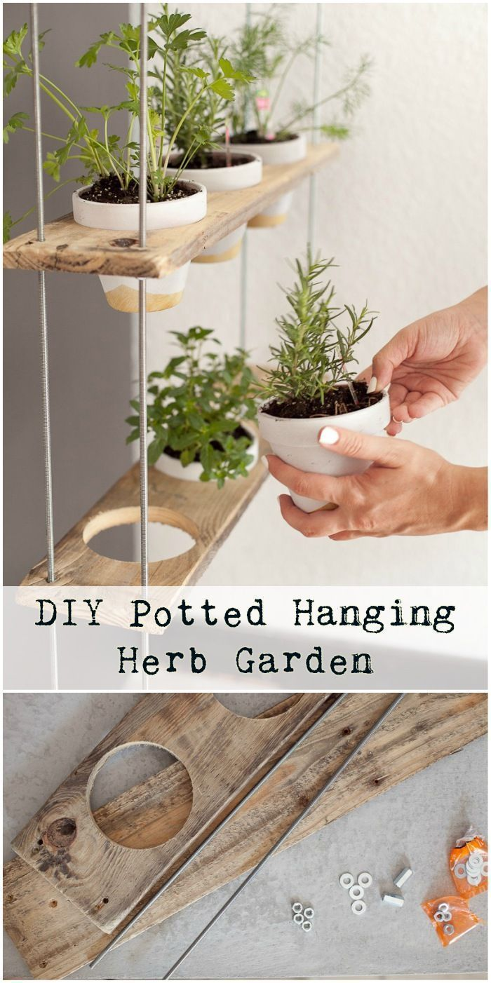 DIY pot hanging herb garden #garden # hanging # potted