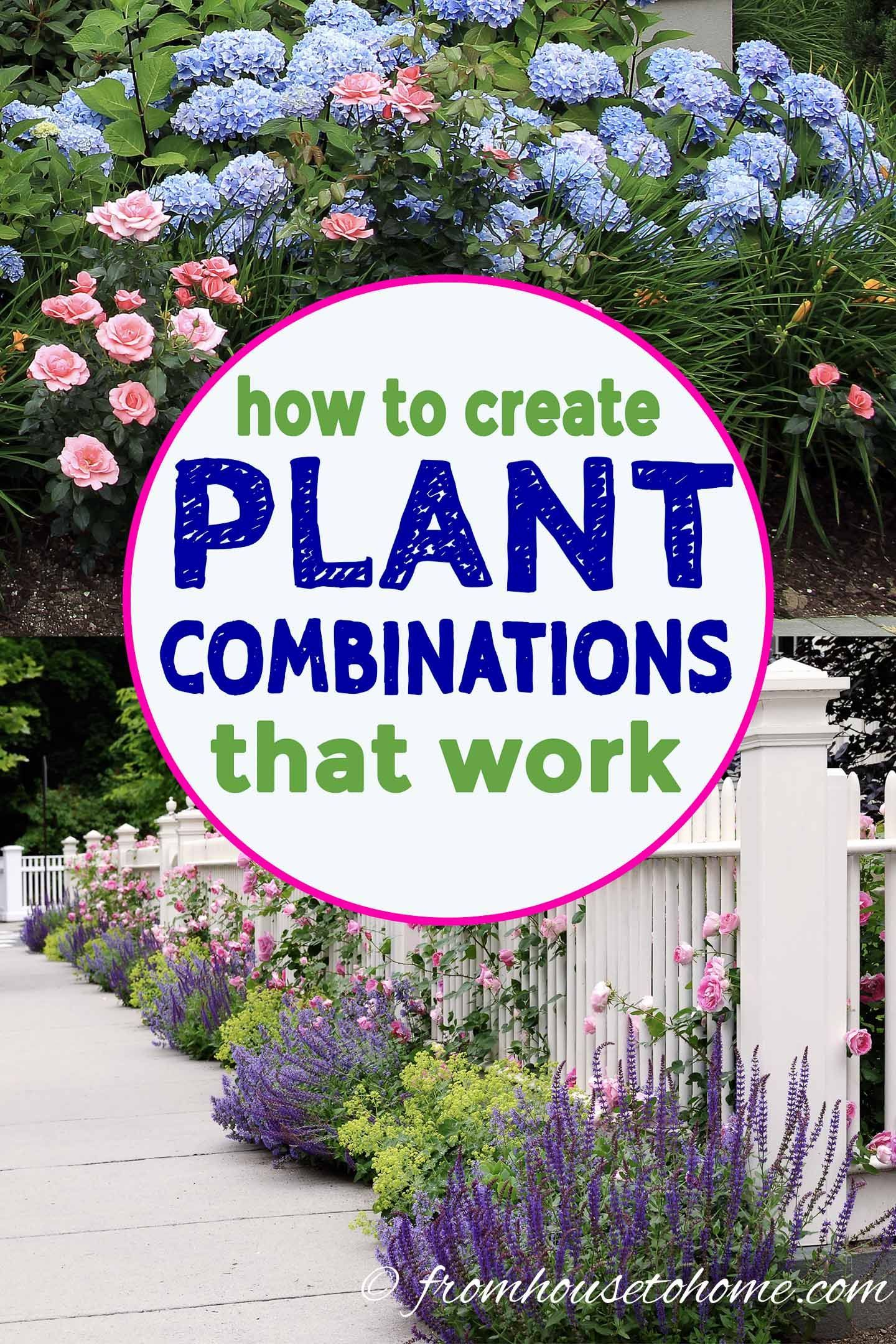 10 Tips For Creating Plant Combinations That Work - Gardening @ From House To Home