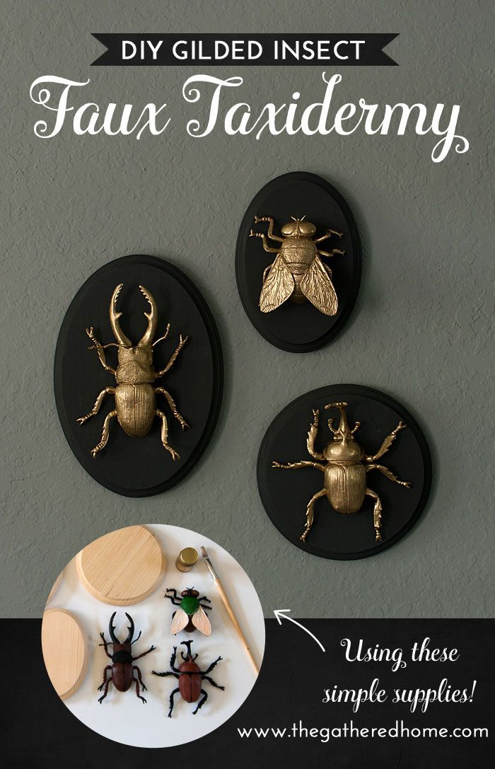 DIY Gilded Insect Faux Taxidermy - The Gathered Home