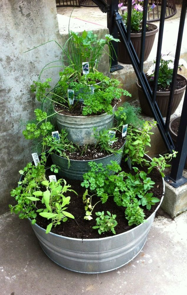 Balcony ideas 2019 - I've always wanted a herb garden. I think I could do it with ...