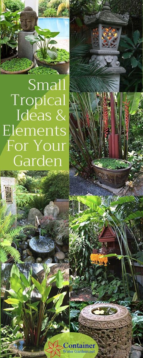 Balinese Style Gardens - Container Water Gardens
